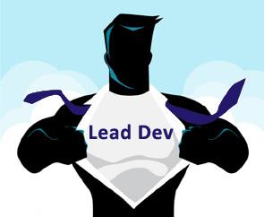 Lead développeur